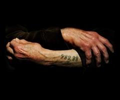 Testimoni dei Testimoni. Ricordare e raccontare Auschwitz